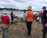 Bankwest Corporate Volunteers at Point Roe with Perth NRM and Friends of Mosman Park